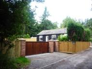 1 bed Detached Bungalow in The Bungalow Newstead...