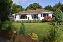 Detached Bungalow for sale in SKEGBY LANE, MANSFIELD...
