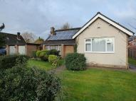 Detached Bungalow for sale in Claremont Road, Culcheth...