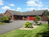 Detached Bungalow for sale in Burtonwood Road...