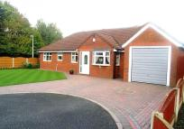 3 bed Detached Bungalow in Ledyard Close, Old Hall...