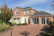 4 bedroom Detached house in Grand Manor Drive...