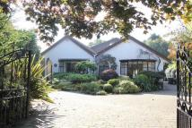Beverley Road South Detached Bungalow for sale