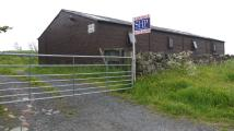 Equestrian Facility property in Belstone Stables...