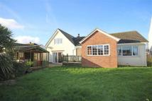 Detached Bungalow for sale in Mudstone Lane...