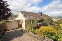 Semi-Detached Bungalow for sale in Southdown Hill, Brixham...