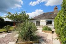 2 bed Semi-Detached Bungalow for sale in Windmill Hill...