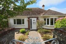 2 bedroom Semi-Detached Bungalow for sale in Beverley Rise...