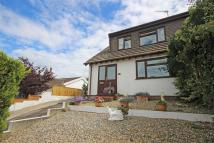 3 bedroom semi detached house for sale in Maple Road...