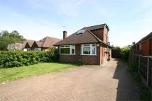 2 bed Detached Bungalow in Louis Fields, Guildford...