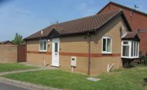 2 bed Detached Bungalow to rent in Windsor Close, Sudbrooke...