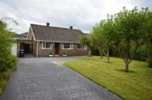 3 bed Detached Bungalow for sale in Lime Tree Road, Matlock...