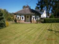 New Road Detached Bungalow to rent