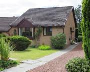 Detached Bungalow in Turnberry Gardens...