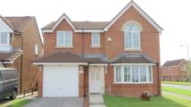Detached property in Sandyway Close...