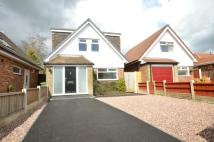 Bungalow for sale in Southover, Bolton...
