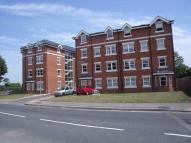Flat to rent in PRESTON COURT...