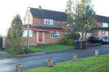 3 bedroom semi detached house to rent in Wilshere Road, Welwyn...