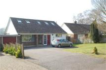 Detached Bungalow in The Limberlost, Welwyn...