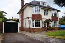 5 bed property for sale in Christchurch Park, IP1