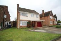 4 bed property for sale in Penshurst Road, IP3