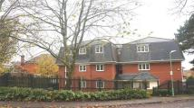 3 bedroom Apartment to rent in HALF PRICE RENT FOR...