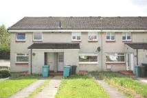 Flat in Barclay Road, Motherwell