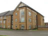 Flat in Roxburgh Court...