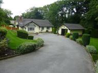 Bungalow for sale in Yew Tree Grove...