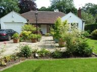 3 bed Bungalow in Motcombe Grove...