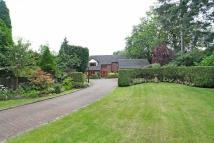 Detached home in Hawley Drive, Hale Barns