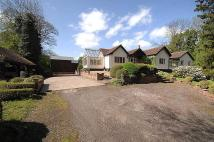 5 bedroom Detached home for sale in Mill Lane, Ashley