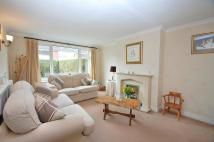 4 bedroom semi detached property for sale in Birchwood Drive...