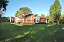 Bungalow for sale in The Circle, Mere