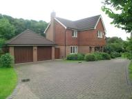 The Meadows Detached property for sale