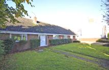 Detached Bungalow for sale in 'Autumn Lodge', Raunds