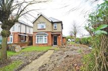 3 bedroom Detached house for sale in Park Street, Raunds