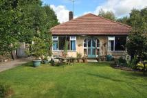 Bungalow for sale in Hope Lane, Adlington