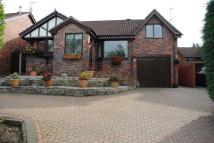 Bungalow for sale in Cornfield Close...