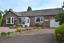 Bungalow for sale in Birchdale Road, Appleton