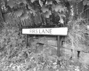 Detached house for sale in Firs Lane, Appleton...