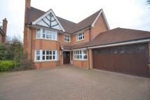 Detached property to rent in Elm Grange, Cow Lane...