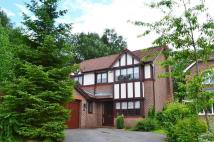 4 bedroom Detached home to rent in Waveney Drive, Wilmslow