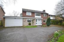 4 bed Detached house to rent in Beech Court...