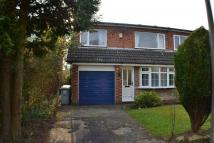 3 bed semi detached property to rent in Bromley Drive...