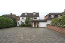 Detached home in Pine Walk, Carshalton...