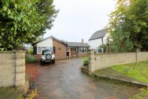 Detached Bungalow in Woodmansterne Lane...