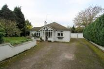 3 bedroom Detached Bungalow for sale in The Woodlands...