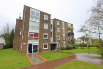 Flat for sale in Jasmine Court...