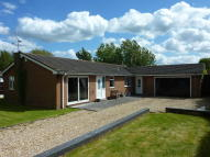 Detached Bungalow for sale in Brecks Road, Ordsall...